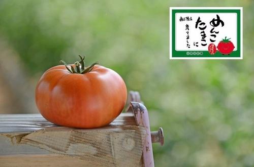 はるちゃんトマト.jpg