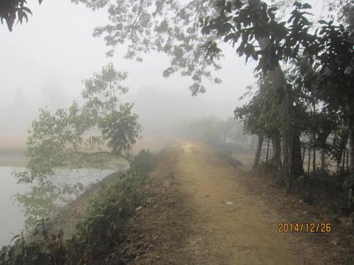 霧がいつもかかる道.jpg
